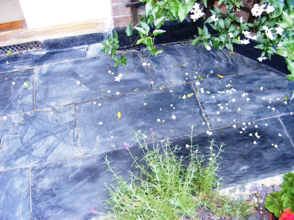 Natural Slate Path Before Cleaining
